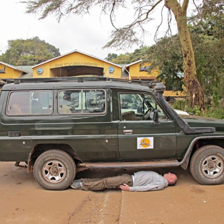 schlechte verstecke / ngorongoro 2011 / foto: nils hendrik mueller